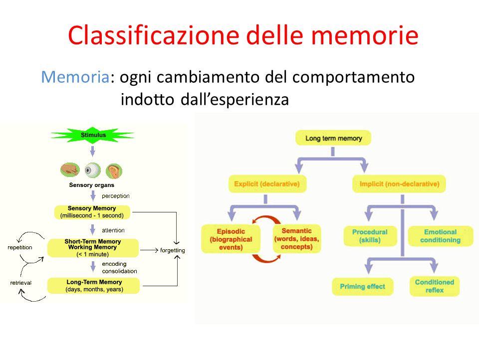 Classificazione delle memorie Memoria: ogni cambiamento del comportamento indotto dallesperienza