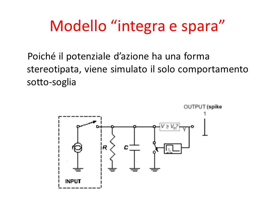 Modello integra e spara Poiché il potenziale dazione ha una forma stereotipata, viene simulato il solo comportamento sotto-soglia