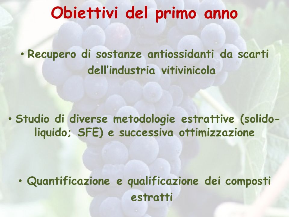 Obiettivi del primo anno Recupero di sostanze antiossidanti da scarti dellindustria vitivinicola Studio di diverse metodologie estrattive (solido- liq