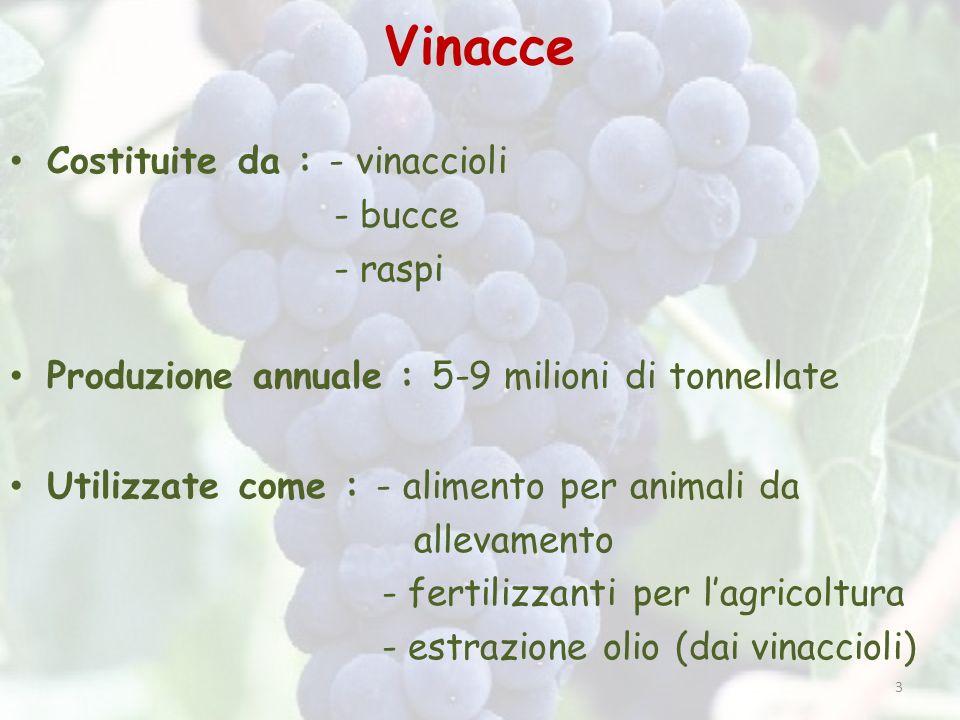 3 Vinacce Costituite da : - vinaccioli - bucce - raspi Produzione annuale : 5-9 milioni di tonnellate Utilizzate come : - alimento per animali da alle