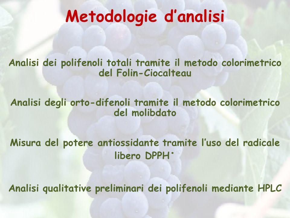 Metodologie danalisi Analisi dei polifenoli totali tramite il metodo colorimetrico del Folin-Ciocalteau Analisi degli orto-difenoli tramite il metodo