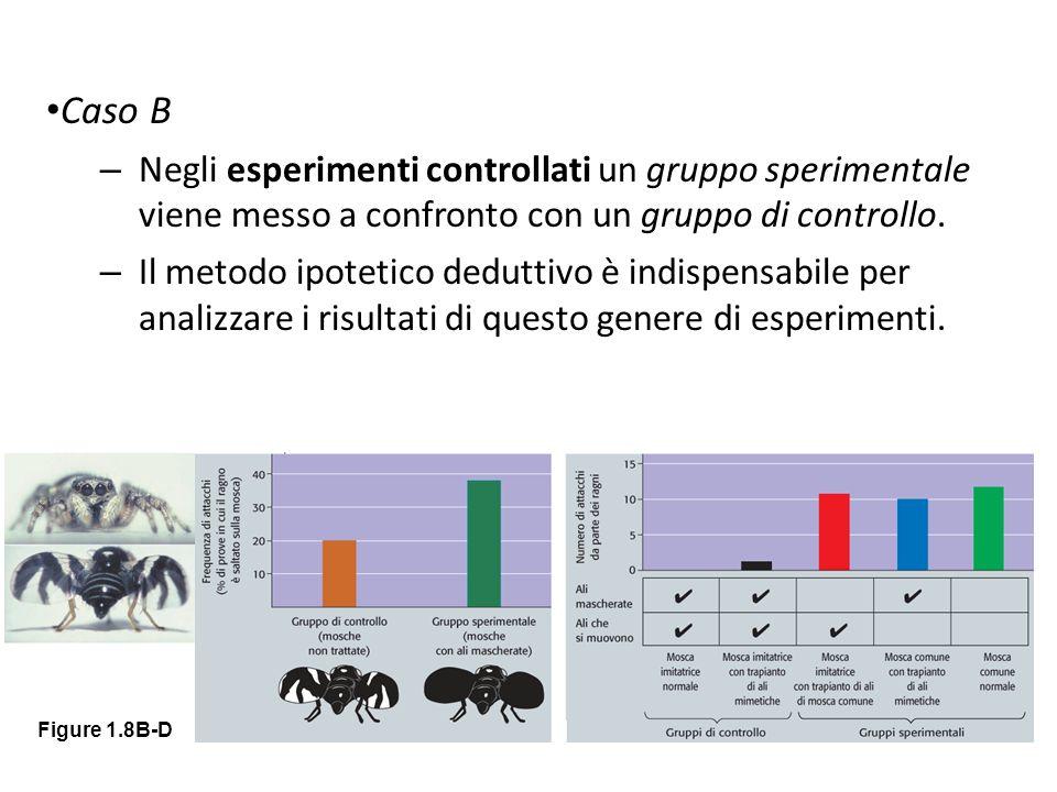 Caso B – Negli esperimenti controllati un gruppo sperimentale viene messo a confronto con un gruppo di controllo. – Il metodo ipotetico deduttivo è in