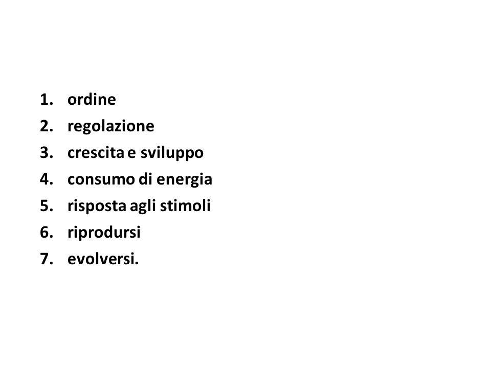 1.ordine 2.regolazione 3.crescita e sviluppo 4.consumo di energia 5.risposta agli stimoli 6.riprodursi 7.evolversi.