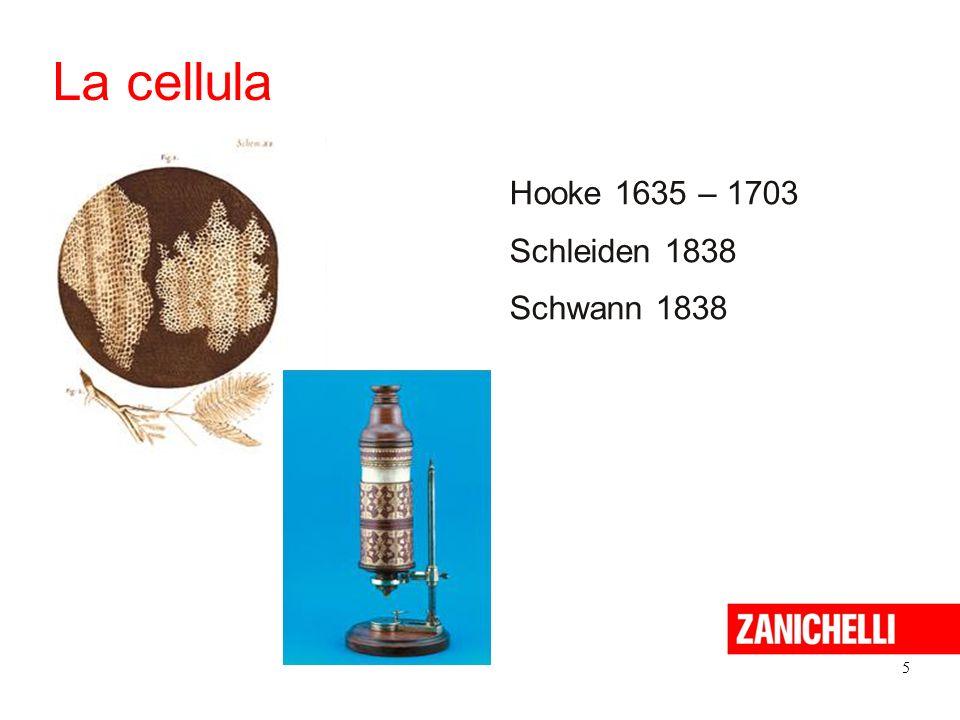 5 La cellula Hooke 1635 – 1703 Schleiden 1838 Schwann 1838