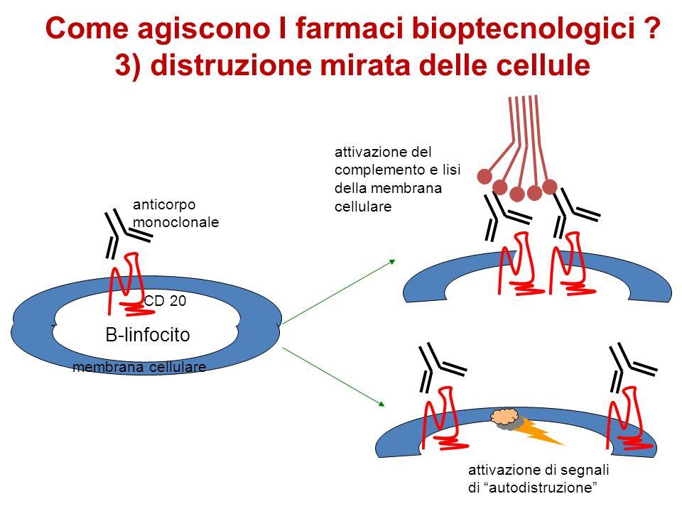 anticorpo monoclonale CD 20 attivazione del complemento e lisi della membrana cellulare attivazione di segnali di autodistruzione membrana cellulare B