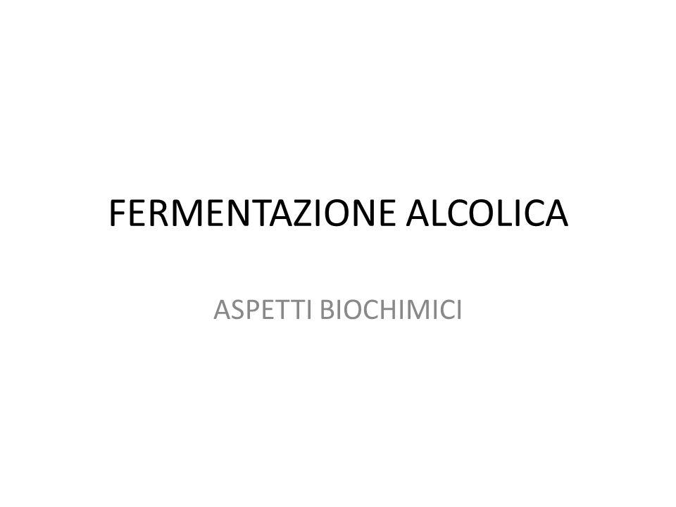 FERMENTAZIONE ALCOLICA ASPETTI BIOCHIMICI