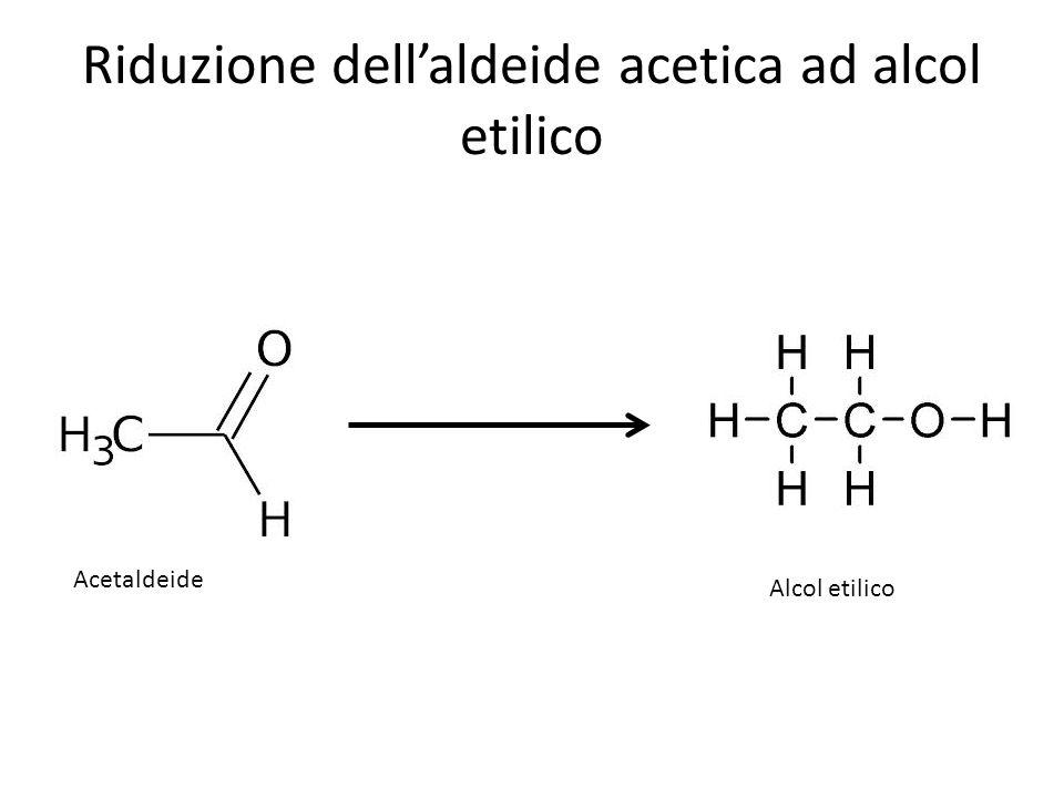 Riduzione dellaldeide acetica ad alcol etilico Alcol etilico Acetaldeide
