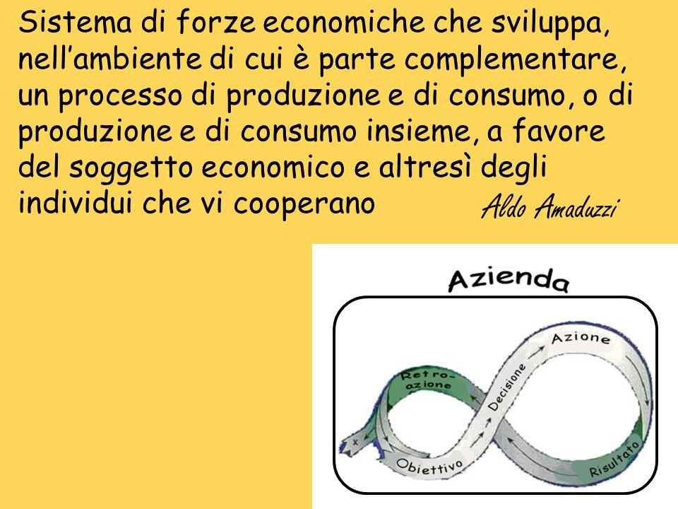 Sistema di forze economiche che sviluppa, nellambiente di cui è parte complementare, un processo di produzione e di consumo, o di produzione e di cons