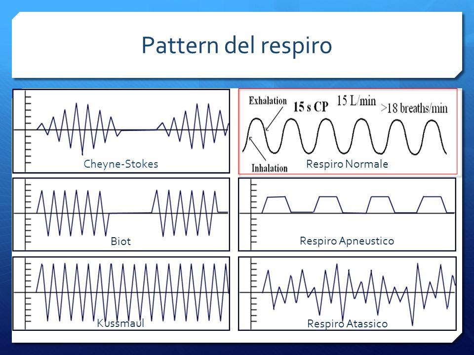 Pattern del respiro Cheyne-Stokes Biot Kussmaul Respiro Atassico Respiro Apneustico Respiro Normale