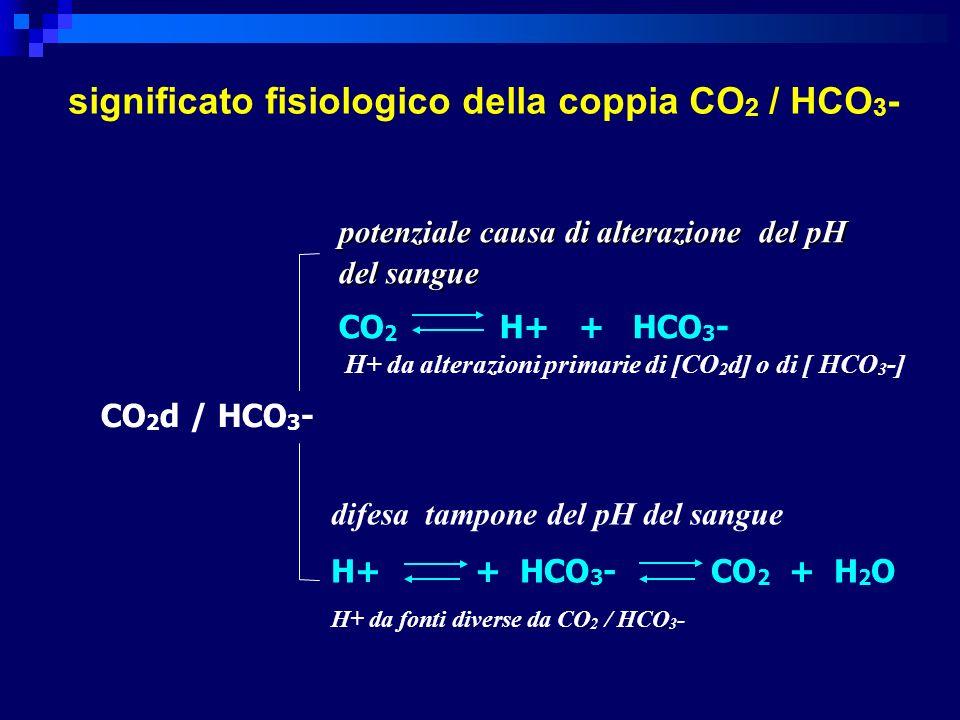CO 2 d / HCO 3 - potenziale causa di alterazione del pH del sangue CO 2 H+ + HCO 3 - H+ da alterazioni primarie di [CO 2 d] o di [ HCO 3 -] difesa tampone del pH del sangue H+ + HCO 3 - CO 2 + H 2 O H+ da fonti diverse da CO 2 / HCO 3 - significato fisiologico della coppia CO 2 / HCO 3 -