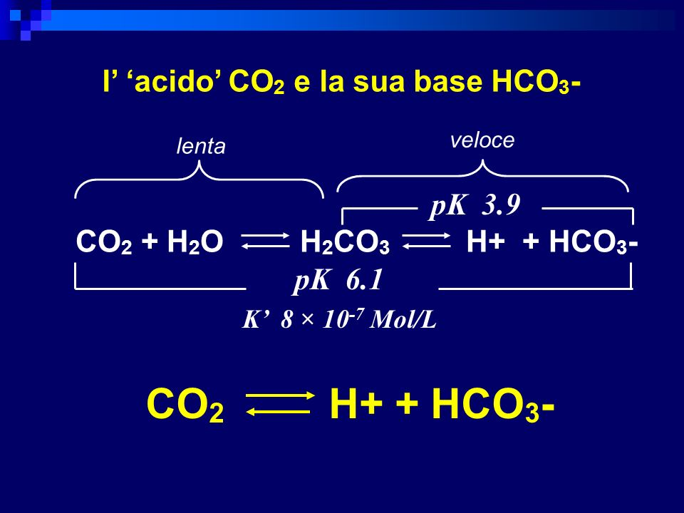 CO 2 + H 2 O H 2 CO 3 H+ + HCO 3 - pK 3.9 pK 6.1 K 8 × 10 -7 Mol/L l acido CO 2 e la sua base HCO 3 - lenta veloce CO 2 H+ + HCO 3 -
