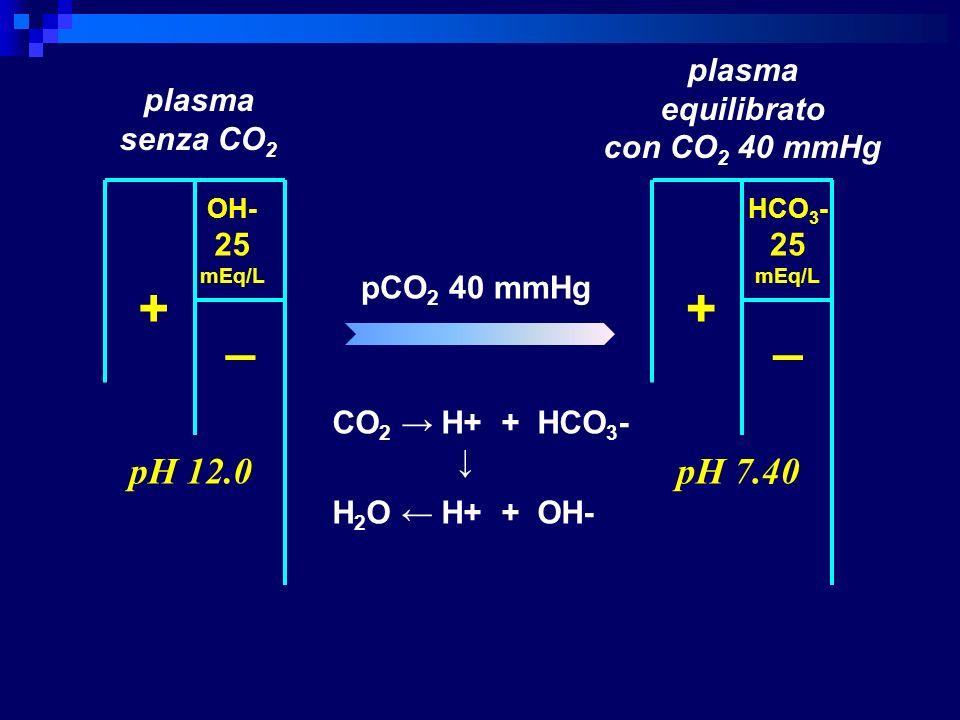 + _ OH- 25 mEq/L pH 12.0 + _ HCO 3 - 25 mEq/L pH 7.40 plasma senza CO 2 pCO 2 40 mmHg plasma equilibrato con CO 2 40 mmHg CO 2 H+ + HCO 3 - H 2 O H+ +