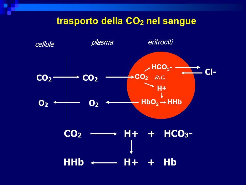 CO 2 a.c.