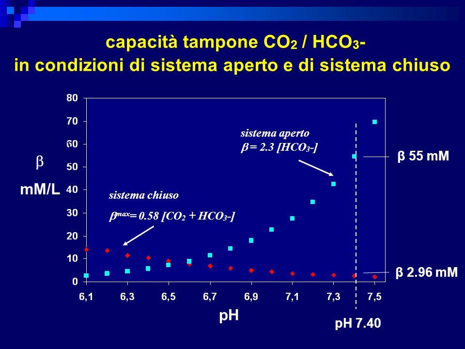 sistema aperto = 2.3 [HCO 3 -] sistema chiuso max = 0.58 [CO 2 + HCO 3 -] capacità tampone CO 2 / HCO 3 - in condizioni di sistema aperto e di sistema
