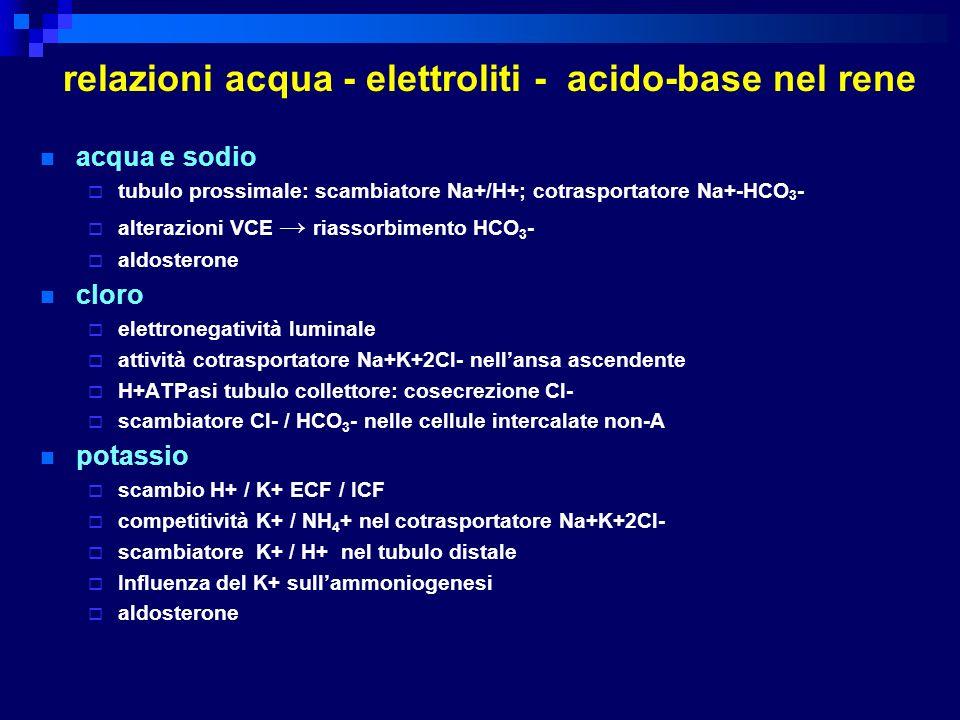 relazioni acqua - elettroliti - acido-base nel rene acqua e sodio tubulo prossimale: scambiatore Na+/H+; cotrasportatore Na+-HCO 3 - alterazioni VCE r