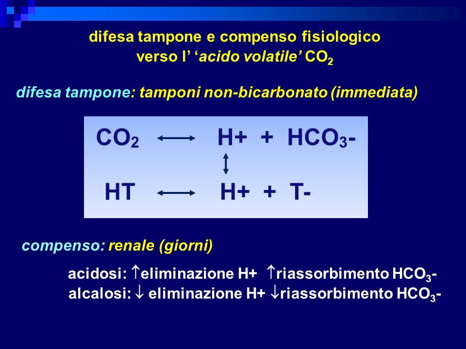 CO 2 H+ + HCO 3 - HT H+ + T- difesa tampone e compenso fisiologico verso l acido volatile CO 2 difesa tampone: tamponi non-bicarbonato (immediata) com