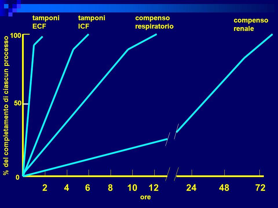 % del completamento di ciascun processo 24681012244872 ore 50 0 100 tamponi ECF tamponi ICF compenso respiratorio compenso renale