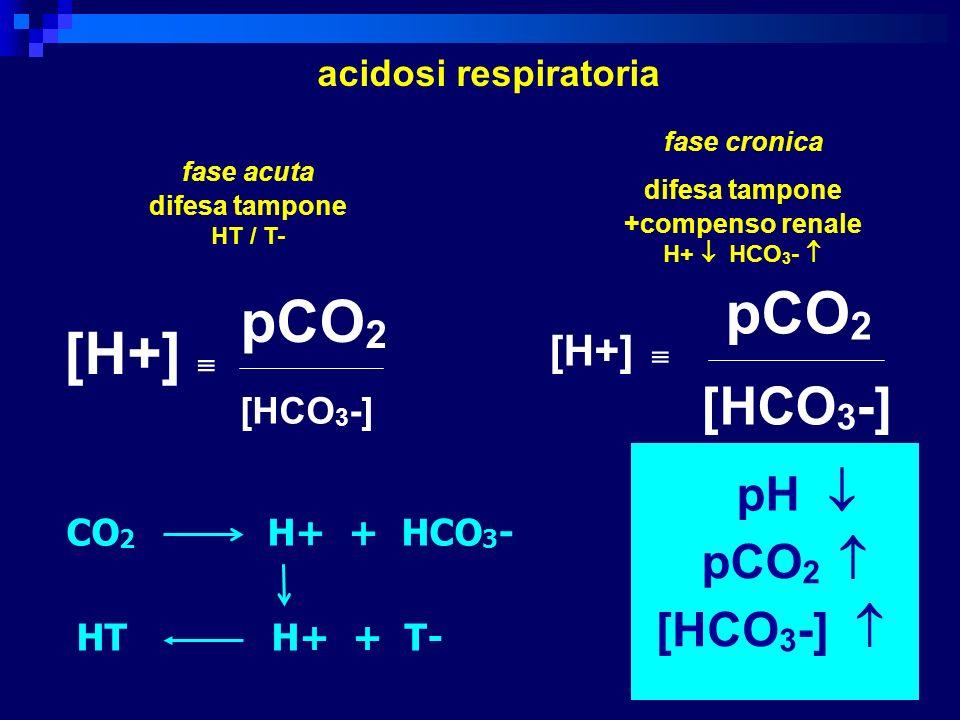 [H+] pCO 2 [HCO 3 -] [H+] pCO 2 [HCO 3 -] pH pCO 2 [HCO 3 -] acidosi respiratoria fase acuta difesa tampone HT / T- fase cronica difesa tampone +compe