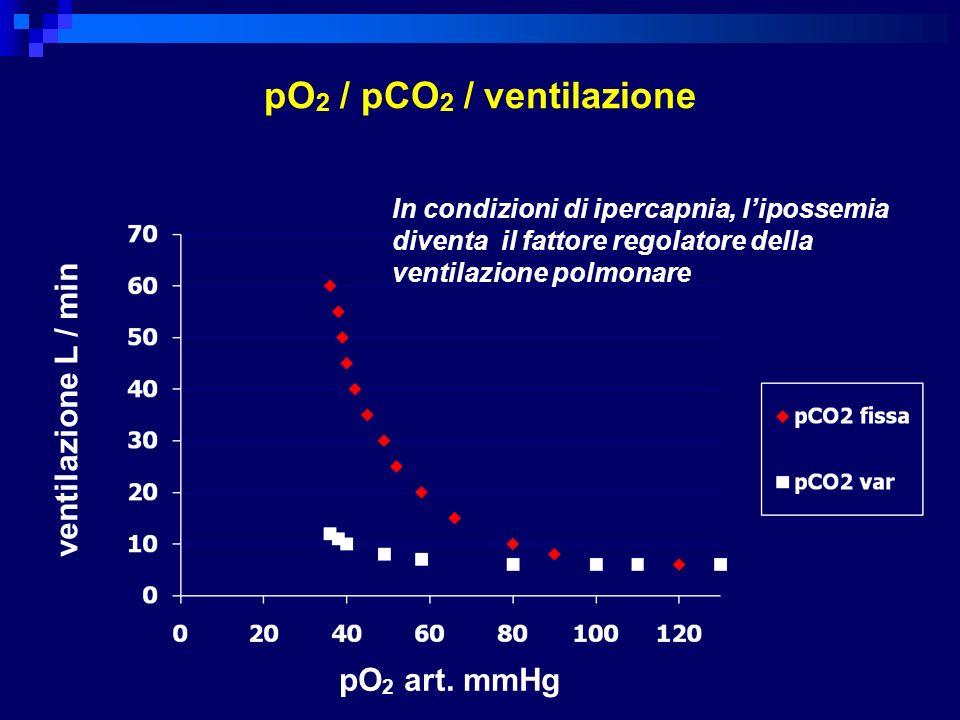 pO 2 / pCO 2 / ventilazione L/mi n pO 2 mmHg pO 2 art. mmHg ventilazione L / min In condizioni di ipercapnia, lipossemia diventa il fattore regolatore