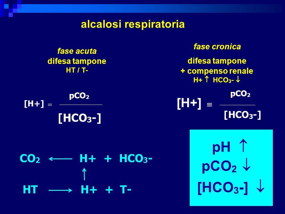 [H+] pCO 2 [HCO 3 -] [H+] pCO 2 [HCO 3 -] pH pCO 2 [HCO 3 -] alcalosi respiratoria fase acuta difesa tampone HT / T- fase cronica difesa tampone + com