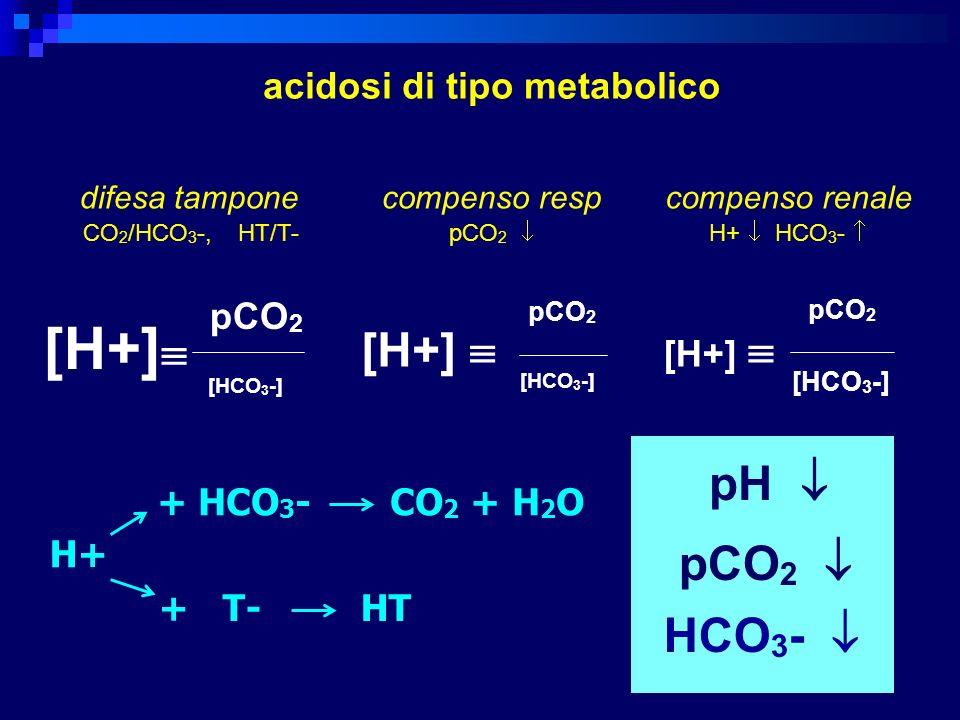 [H+] pCO 2 [HCO 3 -] [H+] pCO 2 [HCO 3 -] [H+] pCO 2 [HCO 3 -] difesa tampone CO 2 /HCO 3 -, HT/T- pH pCO 2 HCO 3 - acidosi di tipo metabolico compens