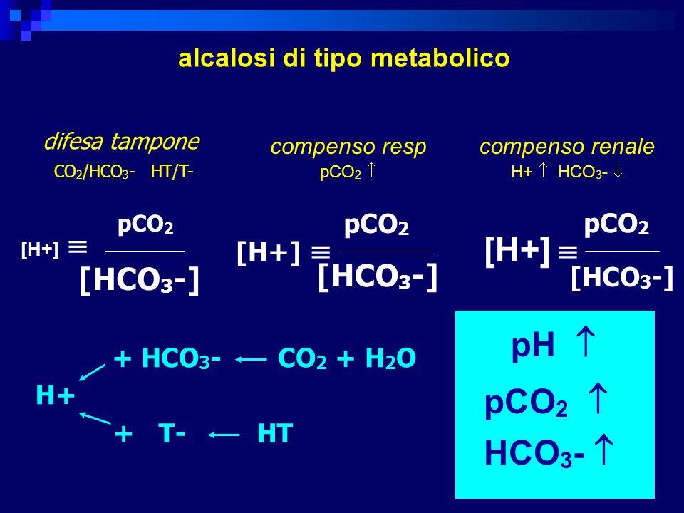 [H+] pCO 2 [HCO 3 -] [H+] pCO 2 [HCO 3 -] [H+] pCO 2 [HCO 3 -] difesa tampone CO 2 /HCO 3 - HT/T- pH pCO 2 HCO 3 - alcalosi di tipo metabolico compens