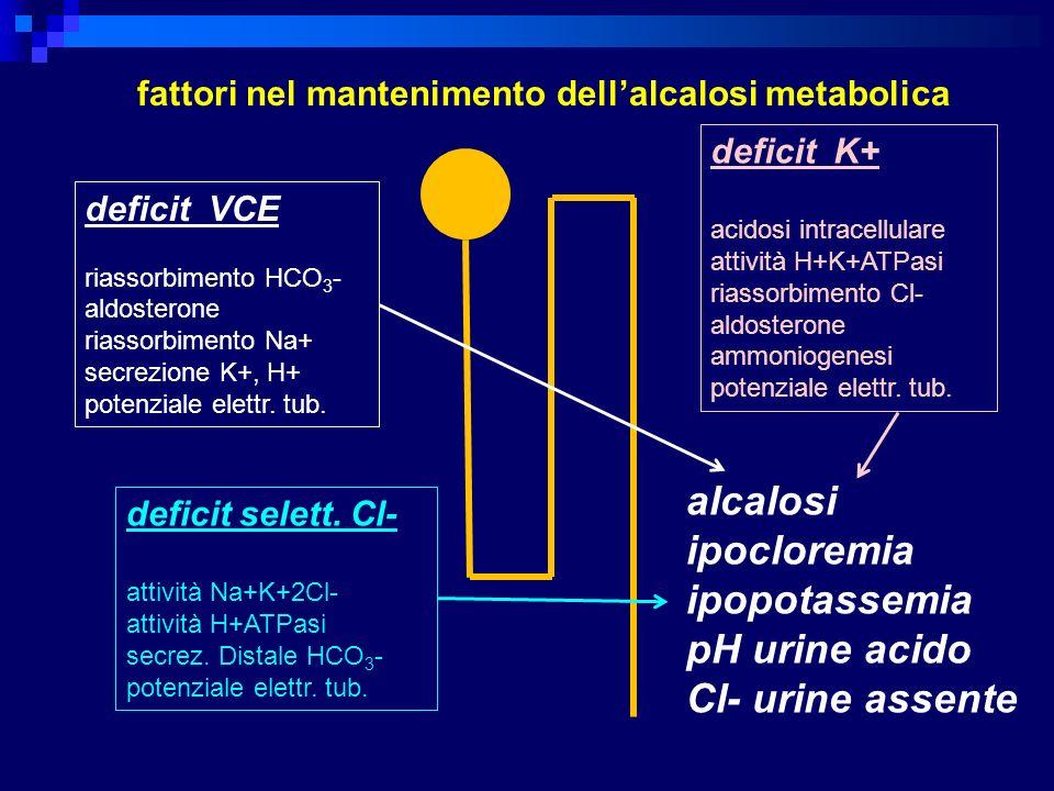 deficit VCE riassorbimento HCO 3 - aldosterone riassorbimento Na+ secrezione K+, H+ potenziale elettr. tub. deficit selett. Cl- attività Na+K+2Cl- att