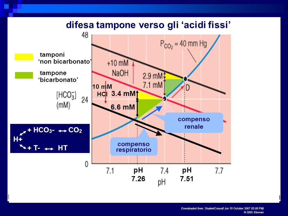 Downloaded from: StudentConsult (on 19 October 2007 05:08 PM) © 2005 Elsevier 3.4 mM 6.6 mM tamponi non bicarbonato tampone bicarbonato tampone bicarbonato + HCO 3 - CO 2 H+ + T- HT difesa tampone verso gli acidi fissi 10 mM HCl pH 7.26 pH 7.51 compenso respiratorio compenso renale