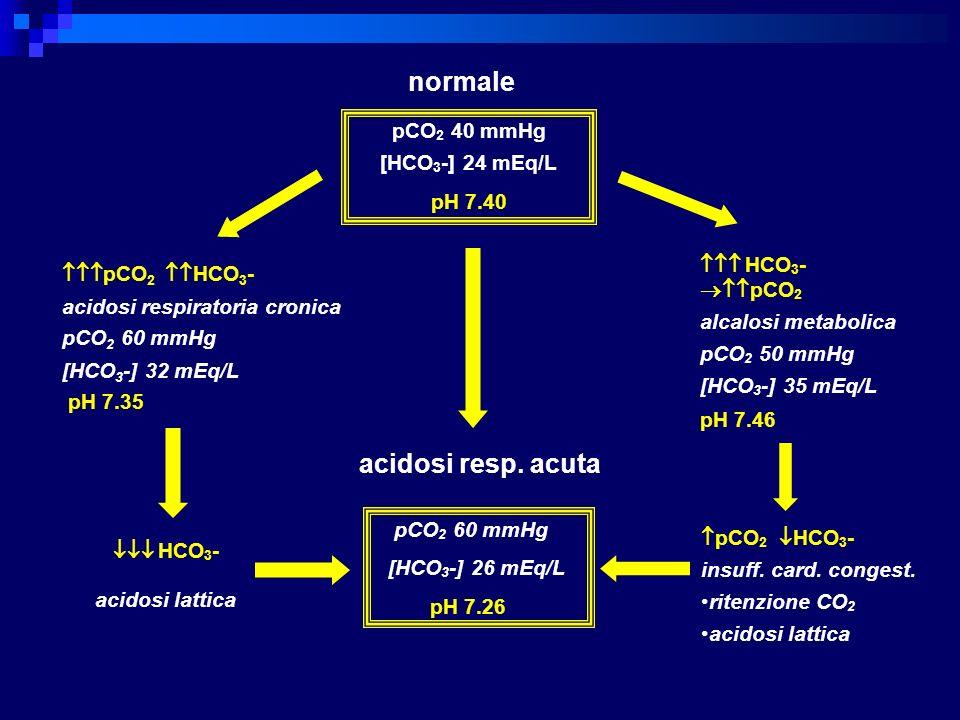 pCO 2 40 mmHg [HCO 3 -] 24 mEq/L pH 7.40 HCO 3 - acidosi lattica pCO 2 60 mmHg [HCO 3 -] 26 mEq/L pH 7.26 HCO 3 - pCO 2 alcalosi metabolica pCO 2 50 m