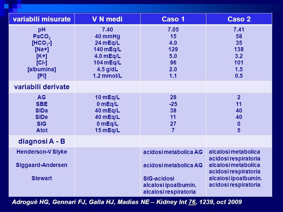 variabili misurate V N mediCaso 1Caso 2 pH PaCO 2 [HCO 3 -] [Na+] [K+] [Cl-] [albumina] [Pi] 7.40 40 mmHg 24 mEq/L 140 mEq/L 4.0 mEq/L 104 mEq/L 4.5 g