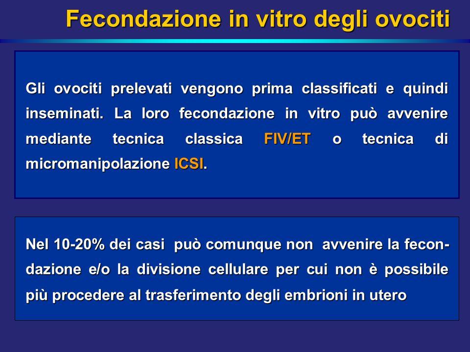 Fecondazione in vitro degli ovociti Gli ovociti prelevati vengono prima classificati e quindi inseminati. La loro fecondazione in vitro può avvenire m