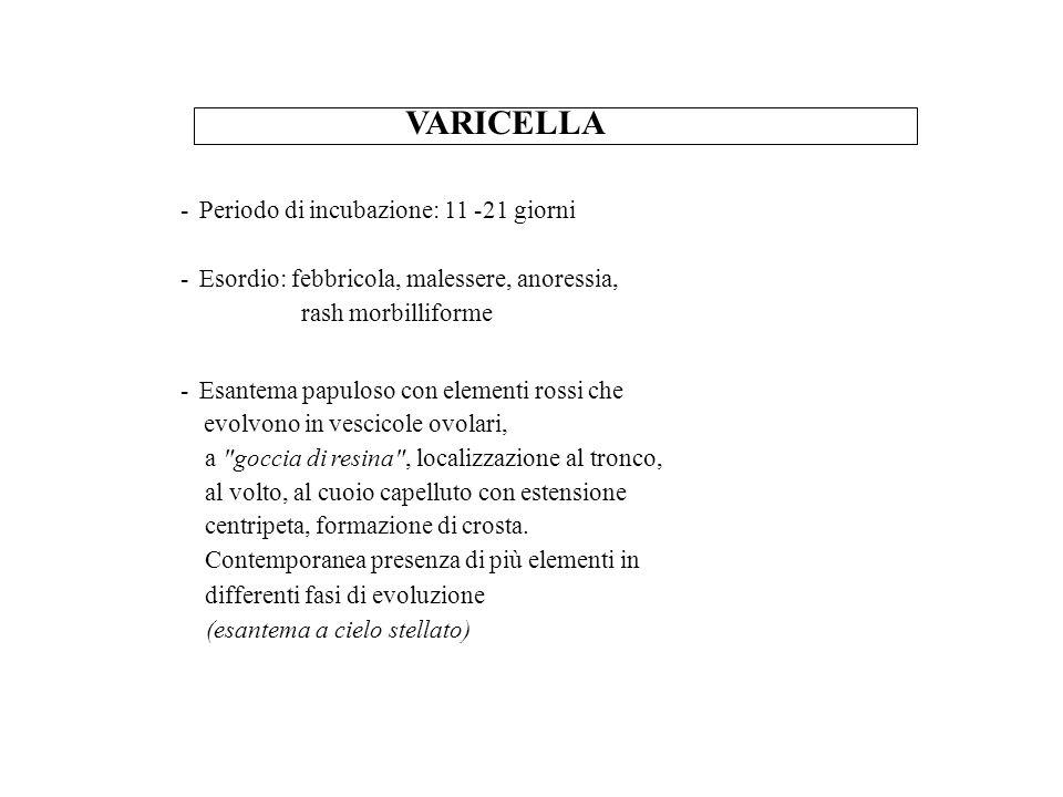 VARICELLA - Periodo di incubazione: 11 -21 giorni - Esordio: febbricola, malessere, anoressia, rash morbilliforme - Esantema papuloso con elementi ros