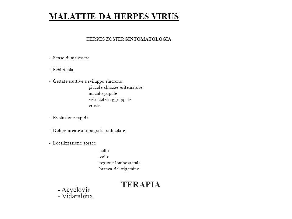 MALATTIE DA HERPES VIRUS HERPES ZOSTER SINTOMATOLOGIA - Senso di malessere - Febbricola - Gettate eruttive a sviluppo sincrono: piccole chiazze eritem