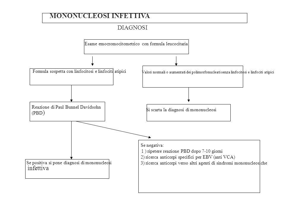 MONONUCLEOSI INFETTIVA DIAGNOSI Esame emocromocitometrico con formula leucocitaria Formula sospetta con linfocitosi e linfociti atipici Valori normali