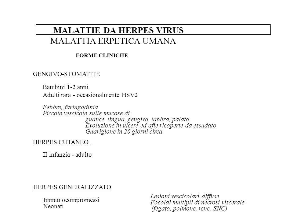 METODOSIGNIFICATO Diagnosi diretta (es.