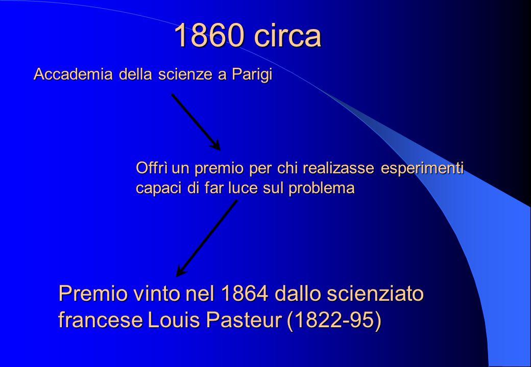 XIX sec. Gli scienzati non credevano più che gli organismi complessi potessero generarsi spontaneamente Linvenzione del microscopio portò ad una signi