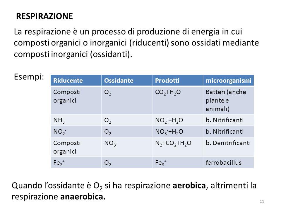 RESPIRAZIONE La respirazione è un processo di produzione di energia in cui composti organici o inorganici (riducenti) sono ossidati mediante composti