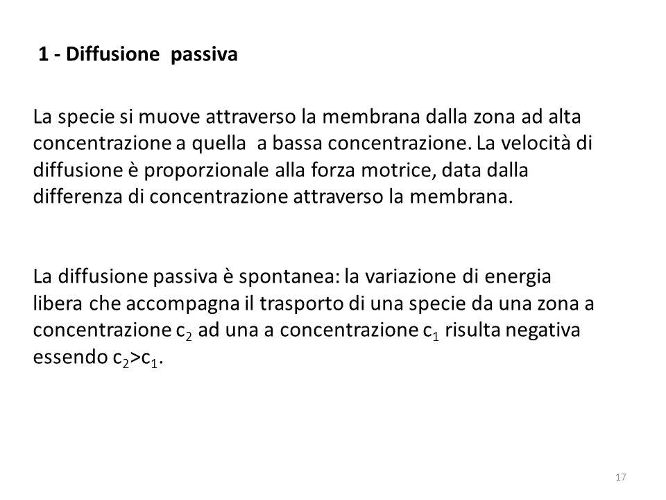 1 - Diffusione passiva La specie si muove attraverso la membrana dalla zona ad alta concentrazione a quella a bassa concentrazione. La velocità di dif