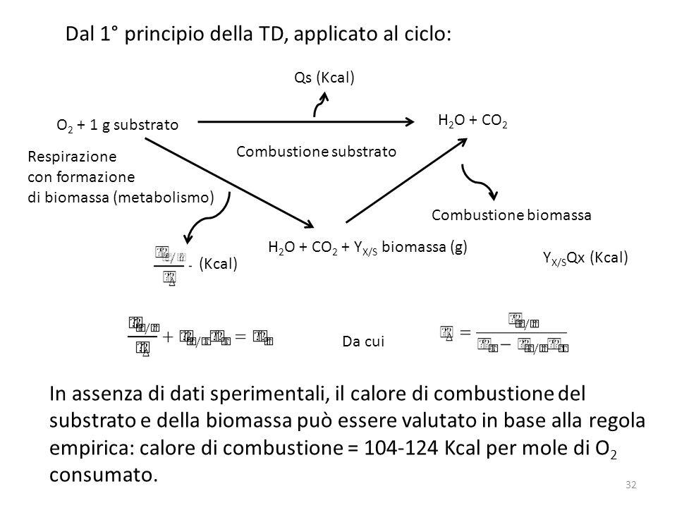 O 2 + 1 g substrato Combustione substrato Combustione biomassa Respirazione con formazione di biomassa (metabolismo) H 2 O + CO 2 Qs (Kcal) H 2 O + CO