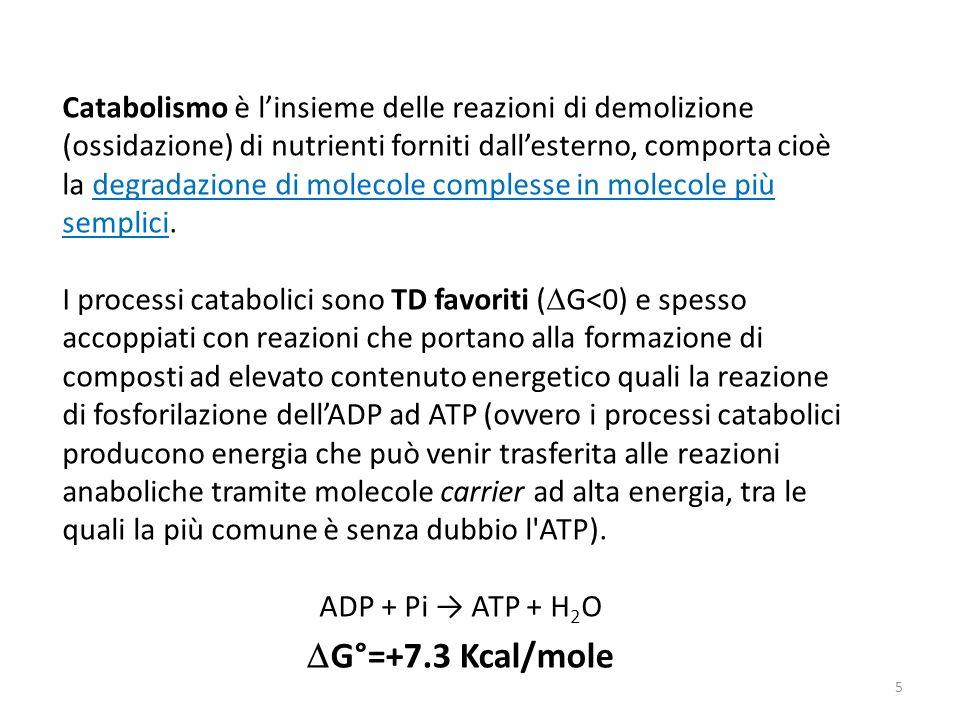 Catabolismo è linsieme delle reazioni di demolizione (ossidazione) di nutrienti forniti dallesterno, comporta cioè la degradazione di molecole comples