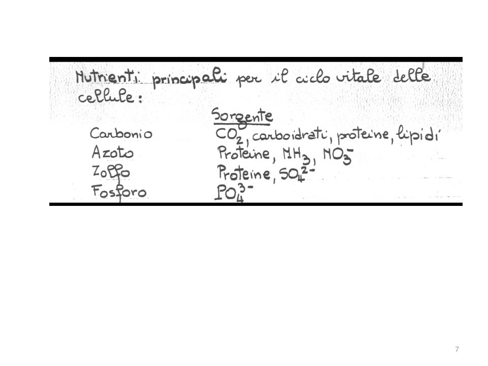 c1 c2 Esterno cellula Interno cellula <0 18