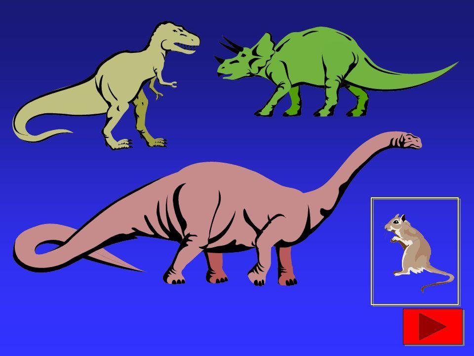 220 milioni di anni fa, apparvero i dinosauri e i primi mammiferi...