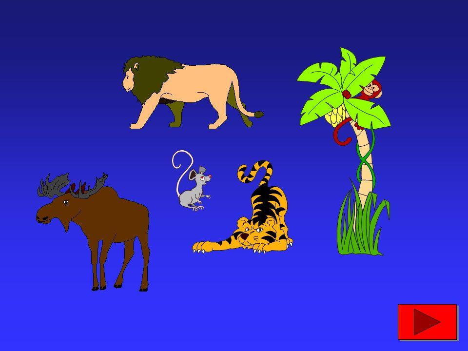 e i mammiferi divennero i veri padroni della Terra...