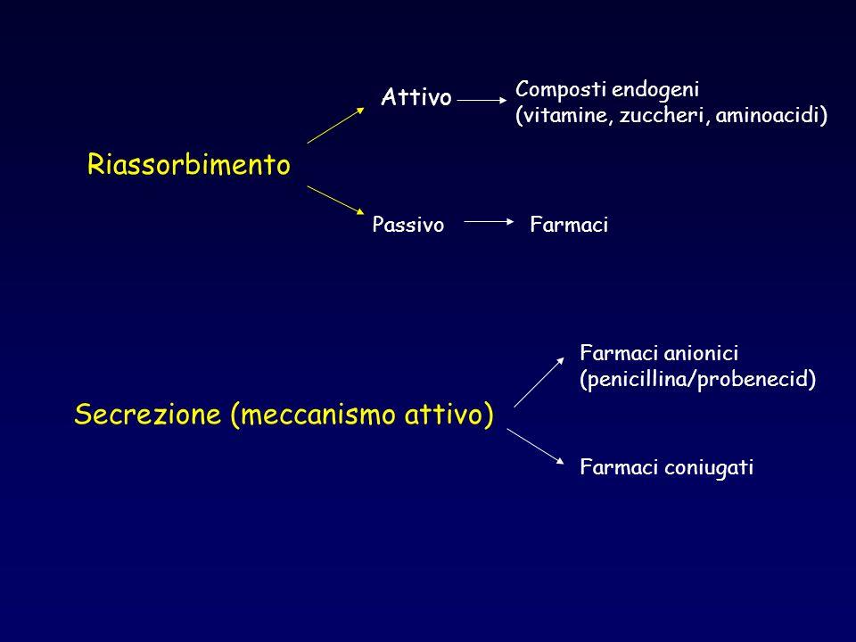 Riassorbimento Attivo Composti endogeni (vitamine, zuccheri, aminoacidi) PassivoFarmaci Secrezione (meccanismo attivo) Farmaci anionici (penicillina/p