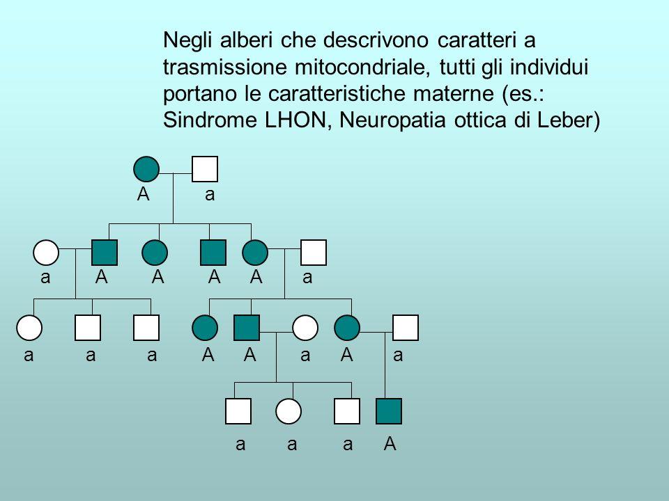 Negli alberi che descrivono caratteri a trasmissione mitocondriale, tutti gli individui portano le caratteristiche materne (es.: Sindrome LHON, Neurop