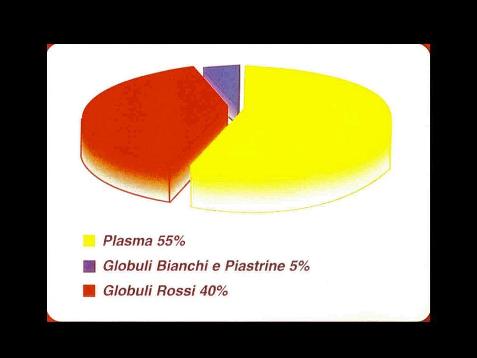 La Plasmaferesi e i vantaggi Con il prelievo del Sangue in sacca, e mediante la sua centrifugazione, è possibile separare le varie componenti del Sangue.