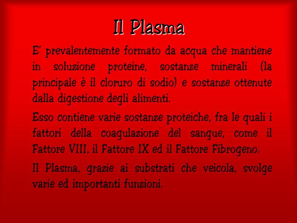 Si stima normalmente che vi sia bisogno di 40 unità di Sangue l anno ogni 1000 persone, cioè circa 2.400.000 unità per la sola Italia.