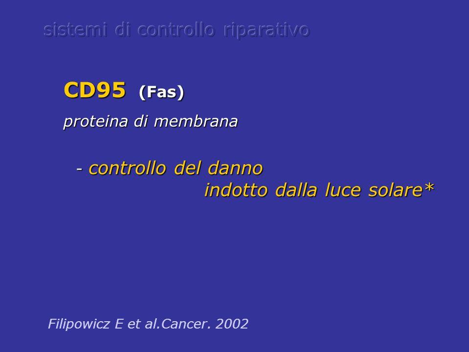 - controllo del danno - controllo del danno indotto dalla luce solare* indotto dalla luce solare* Filipowicz E et al.Cancer. 2002 CD95 (Fas) proteina