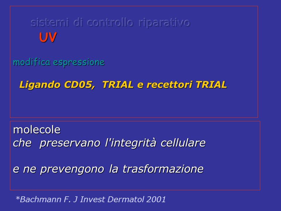 UV UV modifica espressione Ligando CD05, TRIAL e recettori TRIAL Ligando CD05, TRIAL e recettori TRIAL *Bachmann F. J Invest Dermatol 2001 molecole ch