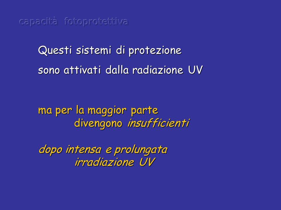 ma per la maggior parte divengono insufficienti divengono insufficienti dopo intensa e prolungata irradiazione UV irradiazione UV Questi sistemi di pr